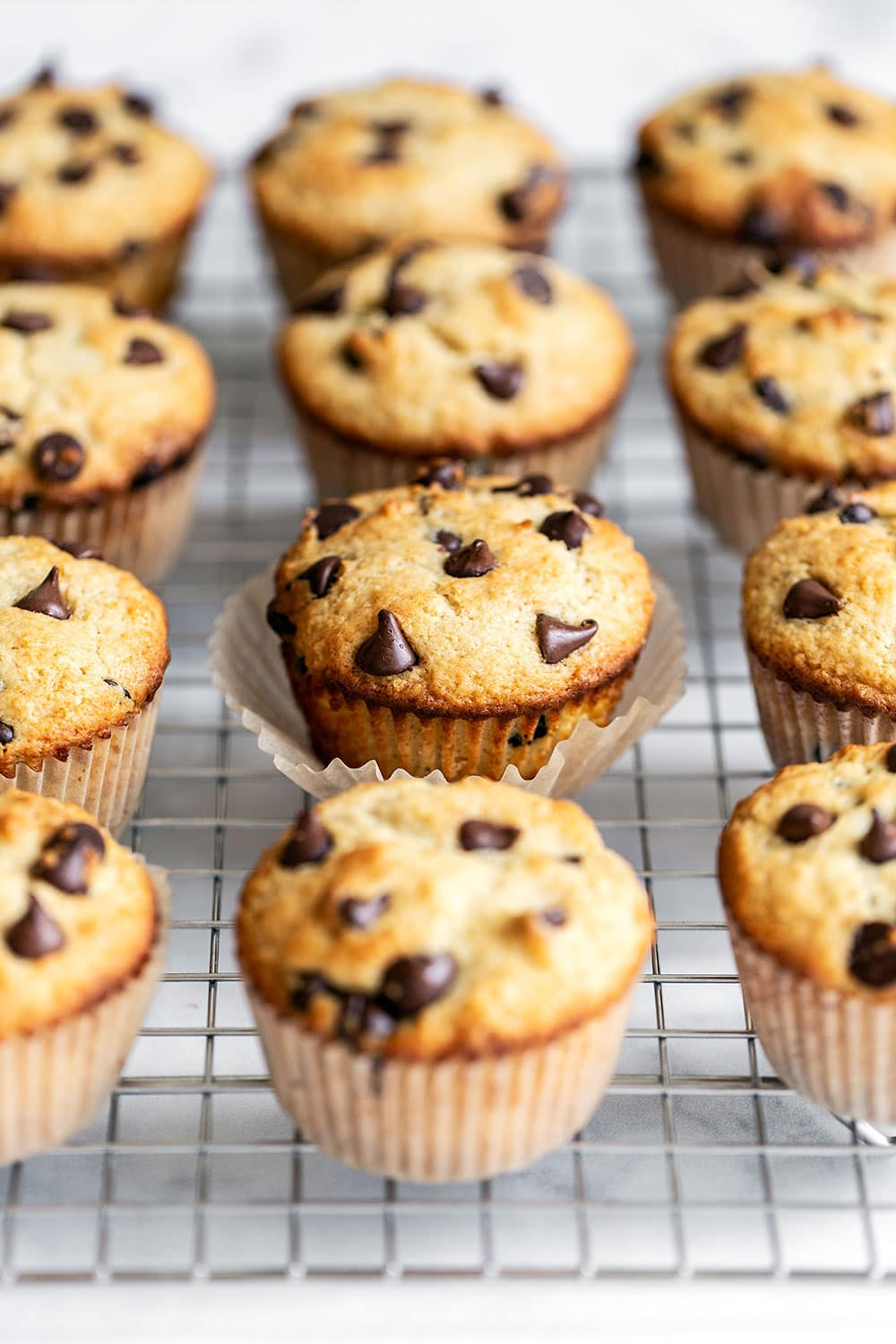 A dozen homemade chocolate chip muffins on a cooling rack