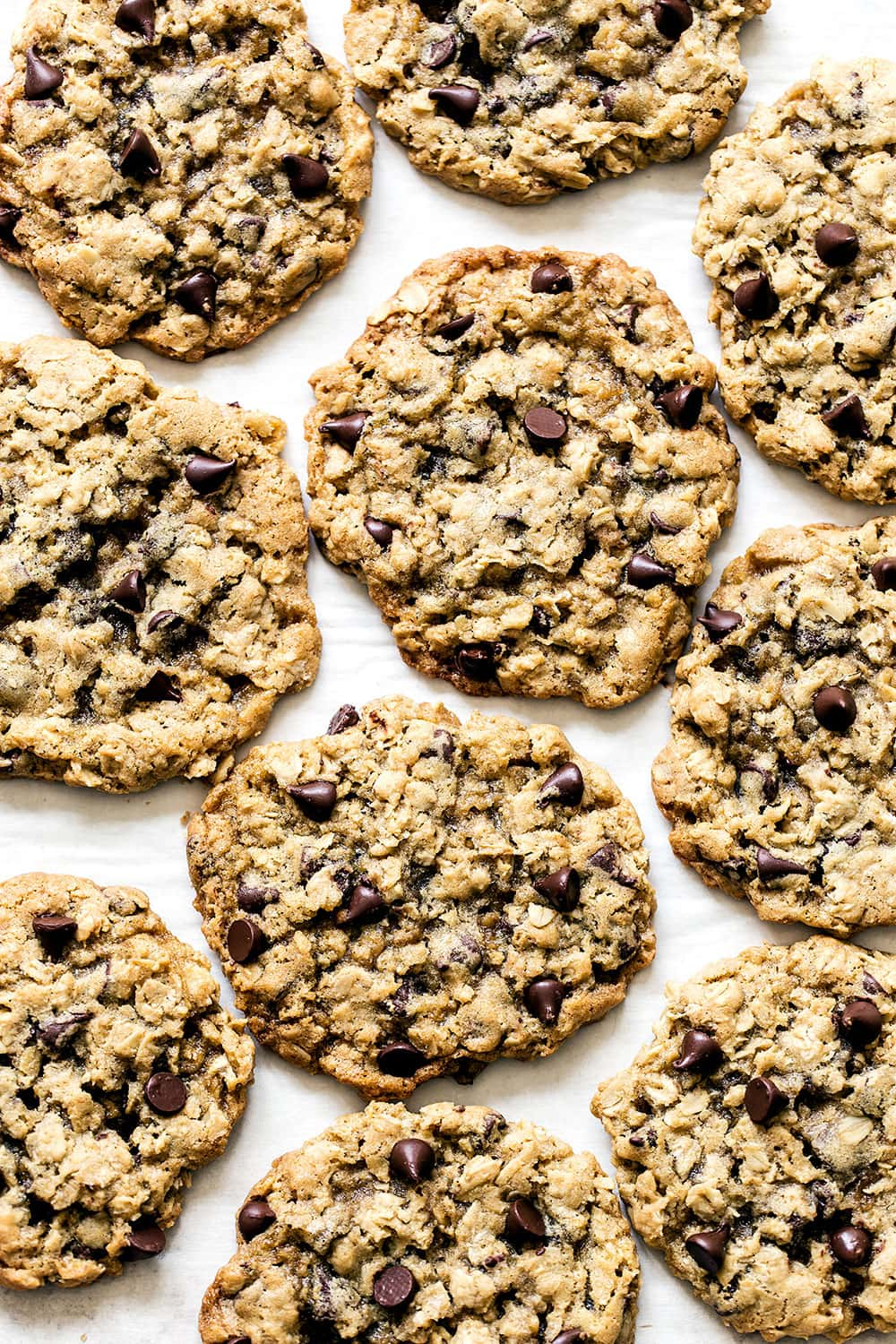 Homemade oatmeal chocolate chip cookies on a counter