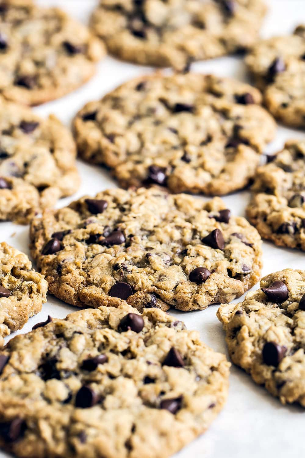 Soft and chewy oatmeal chocolate chip cookies cooling on the counter