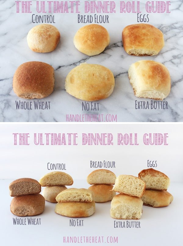 The Ultimate Dinner Roll Guide - how to make soft, crusty, fluffy, or hard rolls!