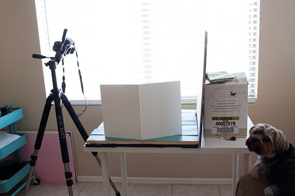My Food Photography Setup from handletheheat.com