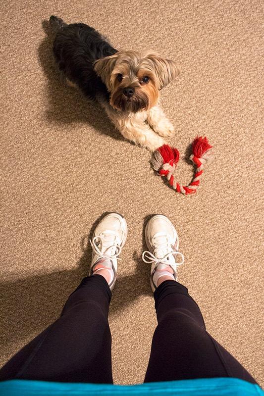Health & Fitness Favorites