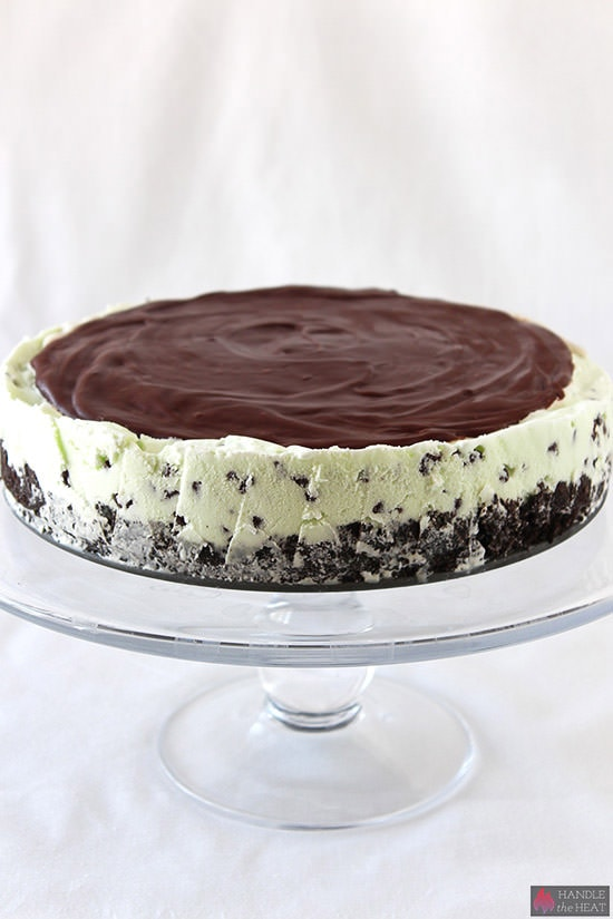 Frozen Mint Chocolate Chip Ice Cream Pie