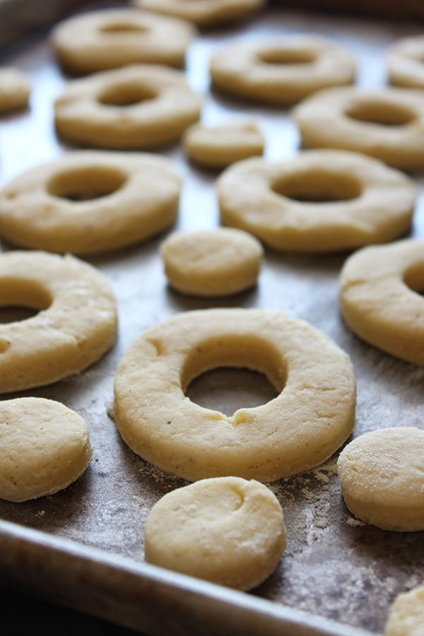 Old-Fashioned Sour Cream Doughnuts - just like at your favorite bakery!! No yeast!