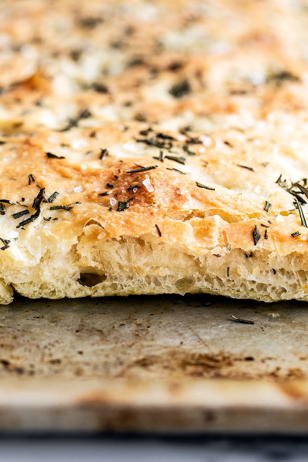Up close of the inside texture of focaccia bread cut open