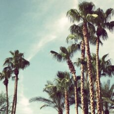 Sizzling Summer Retreat in Scottsdale