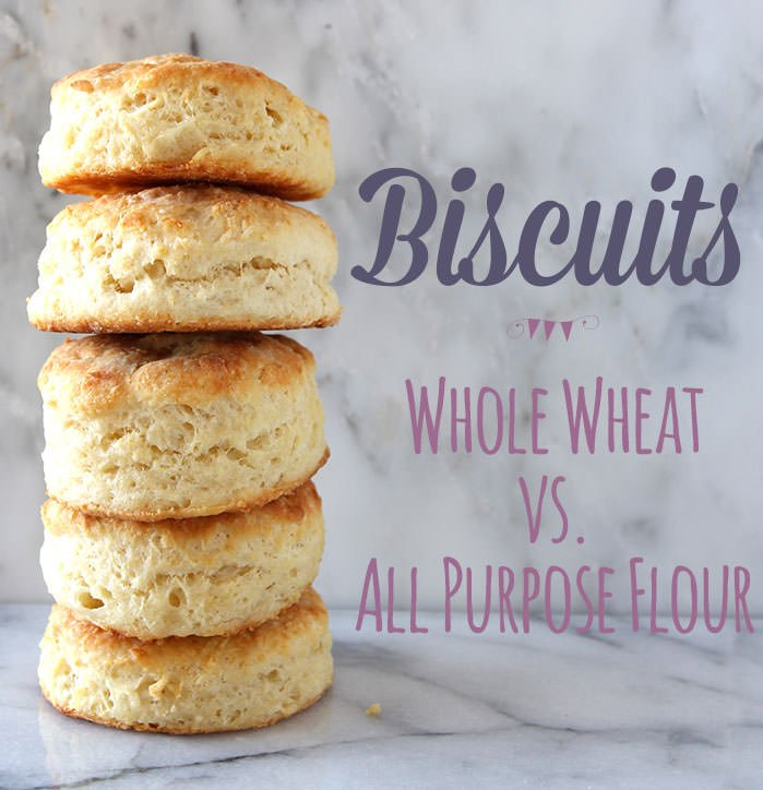 How to Make Biscuits: All Purpose Flour vs. Whole Wheat