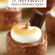 No-Bake S'mores Mini Cheesecakes