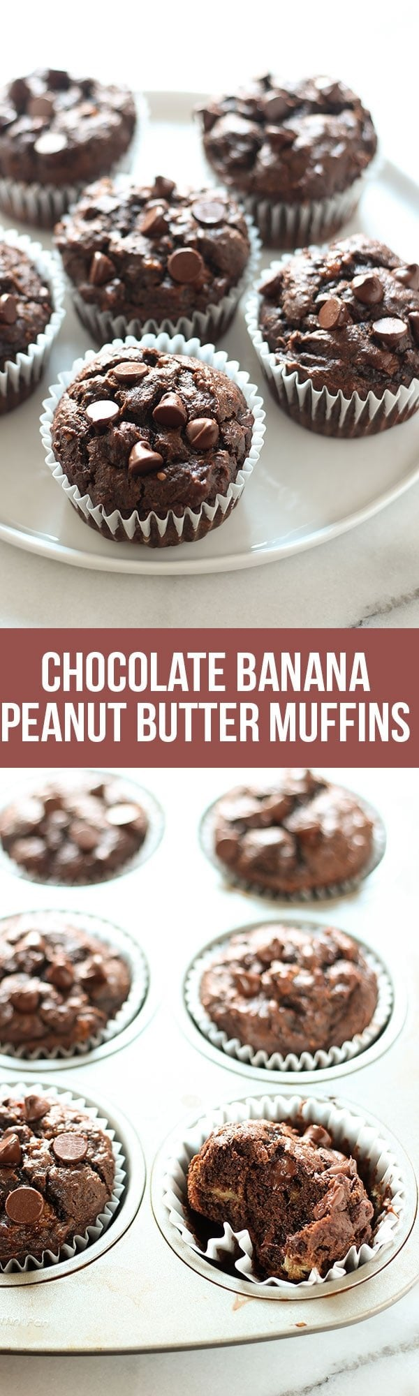 Chocolate Peanut Butter Banana Muffins are made healthier with whole wheat flour, no butter or oil, but tons of flavor! EASY 30 minute recipe.