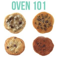 Oven 101: What You NEED to Know