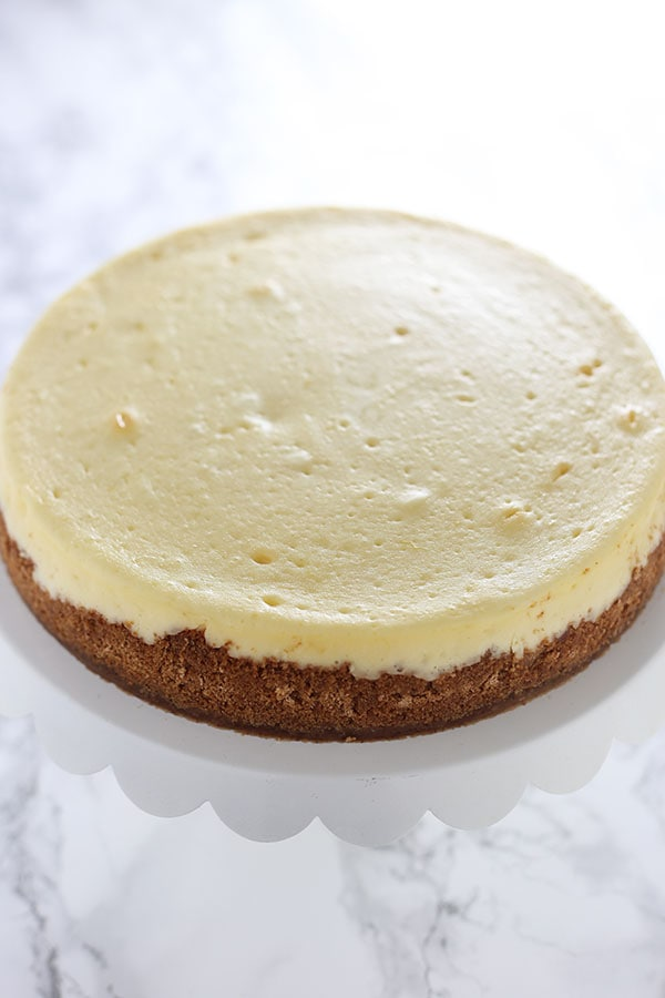 Ultimate Cheesecake Recipe with NO CRACKS!!