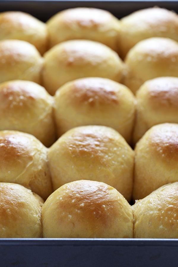 Sweet Potato Dinner Rolls - Handle the Heat