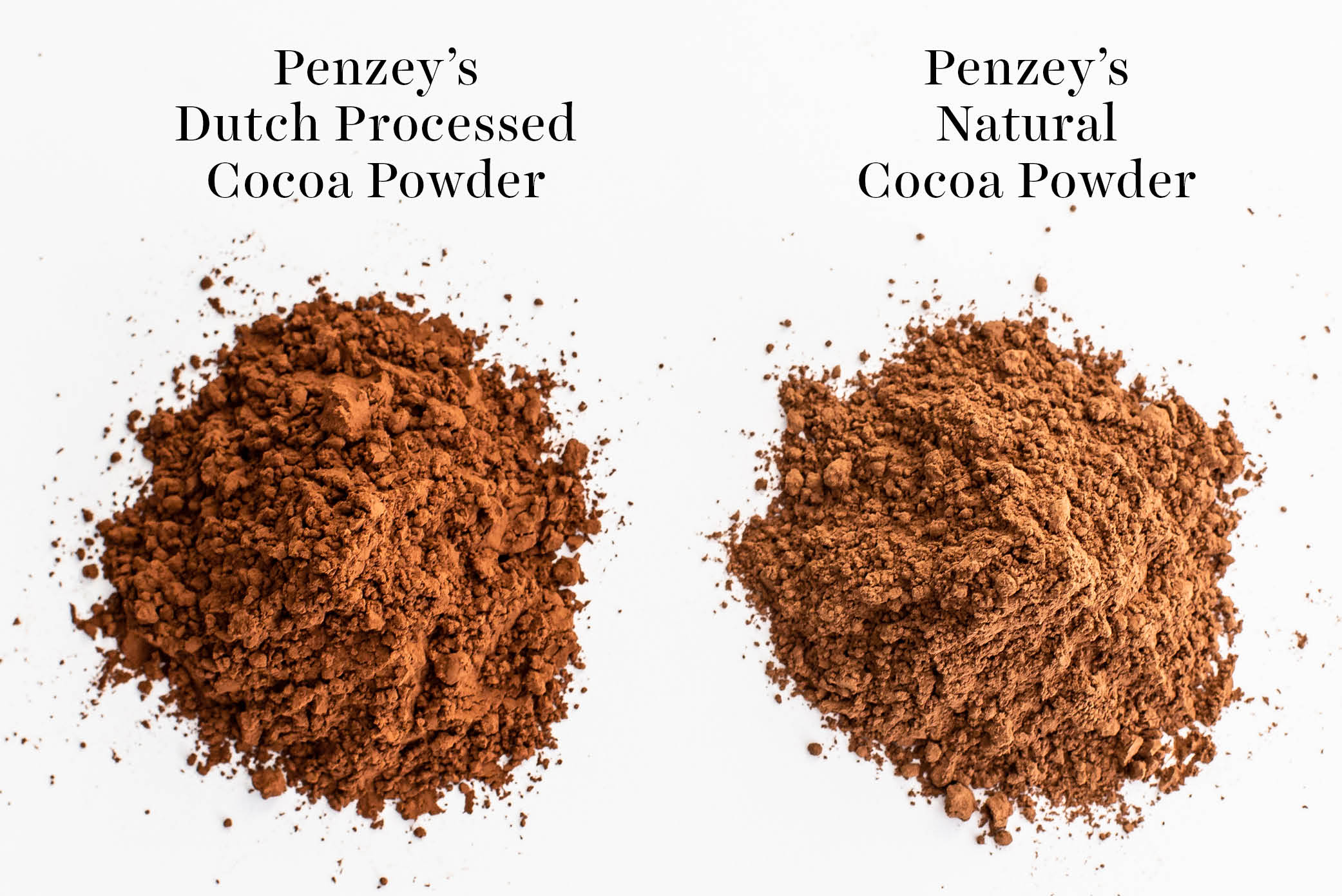 comparison of Penzey's dutch processed vs natural cocoa powder