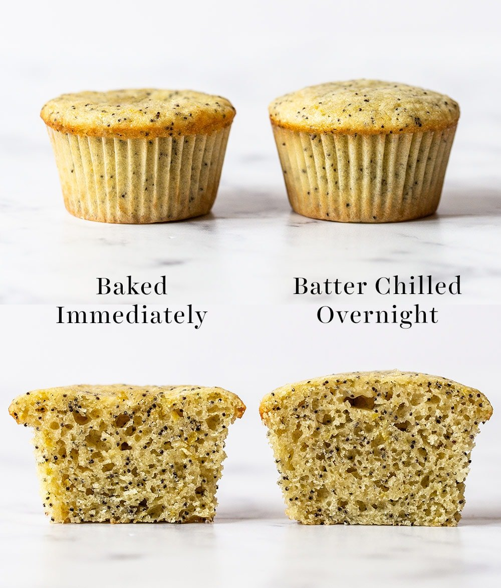 comparison of lemon muffins chilled vs batter not chilled