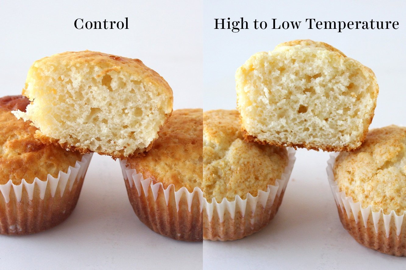 comparison of control muffins vs muffins baked from a high to low temperature