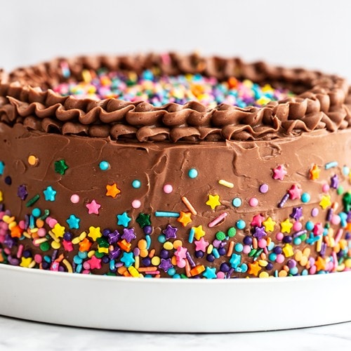 best birthday cake with chocolate frosting and sprinkles