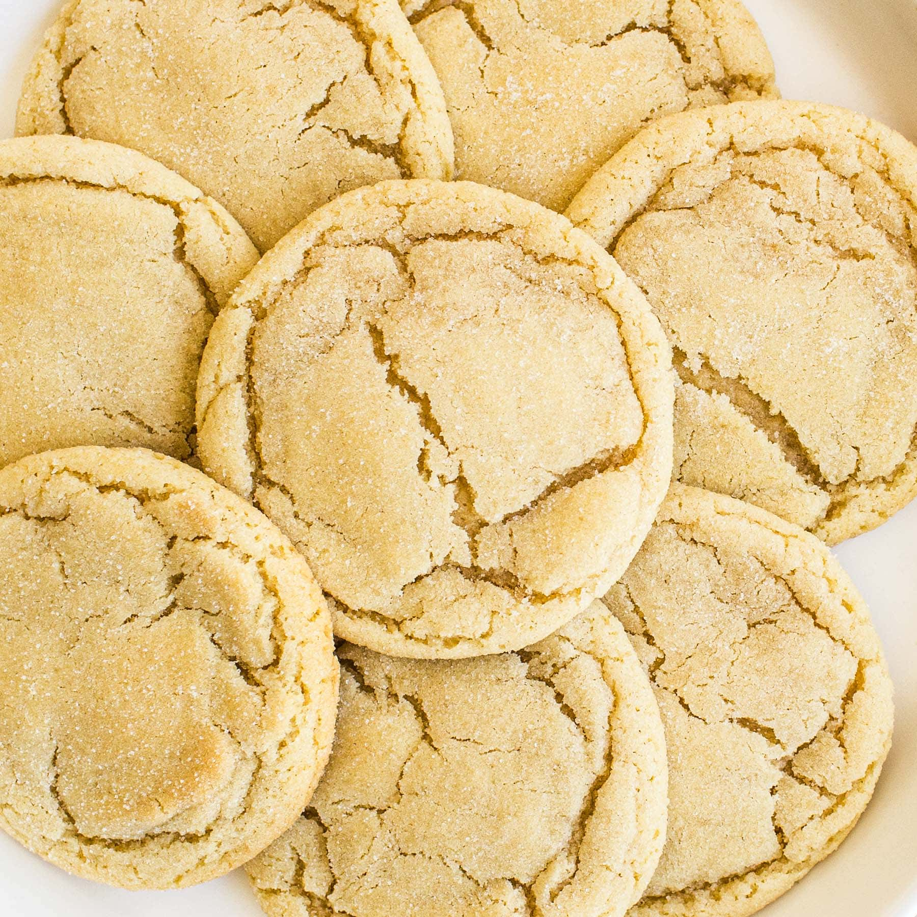 up close shot of best soft and chewy sugar cookies with the perfect texture