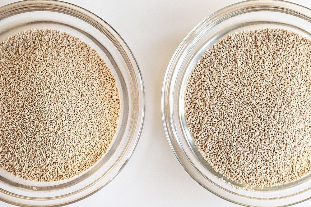 instant vs active dry yeast