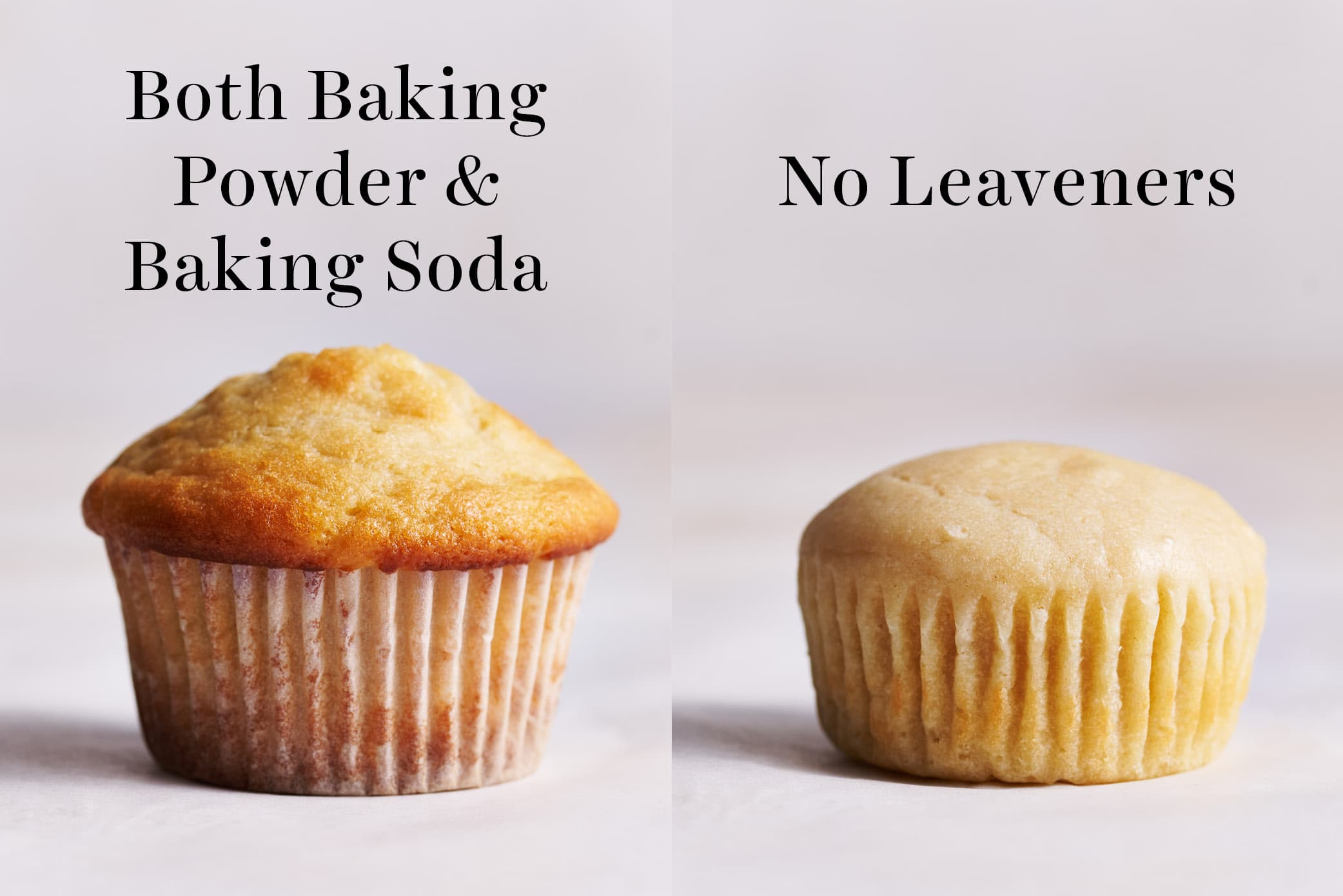 comparison of homemade muffins made with baking powder vs baking soda